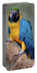 Magnificent Macaw Portable Battery Charger by DigiArt Diaries by Vicky B Fuller