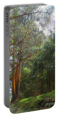 Portable Battery Charger featuring the photograph Magnificent Maui by DJ Florek