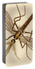 Magnified Mosquito Portable Battery Charger