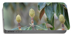 Portable Battery Charger featuring the photograph Magnolia Buds by Maria Urso