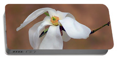 Portable Battery Charger featuring the photograph Magnolia Grace by Nikolyn McDonald