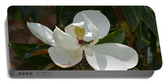 Portable Battery Charger featuring the photograph Magnolia With Beetle by Maria Urso