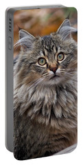 Maine Coon Cat Portable Battery Charger