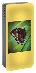 Portable Battery Charger featuring the photograph Majesty Of Nature by Karen Wiles