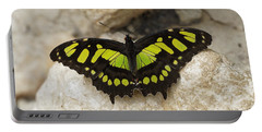 Malachite Butterfly - Siproeta Stelenes Portable Battery Charger