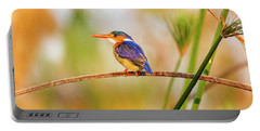 Malachite Kingfisher Hunting Portable Battery Charger