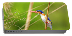 Malalchite Kingfisher Portable Battery Charger