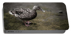 Malard,duckling Portable Battery Charger