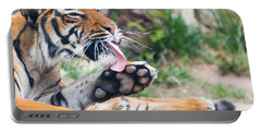 Malayan Tiger Grooming Portable Battery Charger
