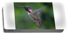 Male Anna's Hummingbird In Flight Portable Battery Charger