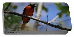 Male Baltimore Oriole Portable Battery Charger