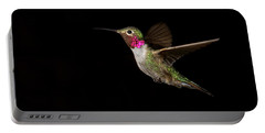 Male Broad-tailed Hummingbird Portable Battery Charger