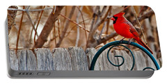 Male Cardinal Portable Battery Charger