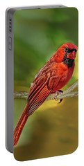 Male Cardinal Headshot  Portable Battery Charger