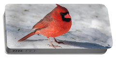 Male Cardinal In Winter Portable Battery Charger by Kenneth Cole