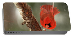 Portable Battery Charger featuring the photograph Male Cardinal Take Off by Darren Fisher
