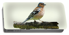 Male Chaffinch, Cream Background Portable Battery Charger