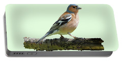 Male Chaffinch, Green Background Portable Battery Charger
