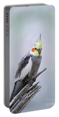 Male Cockatiel #2 V2 Portable Battery Charger