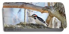 Portable Battery Charger featuring the photograph Male Downey Woodpecker 1112 by Michael Peychich