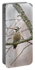 Male Downey Woodpecker Portable Battery Charger by Michael Peychich