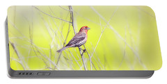 Male Finch On Bare Branch Portable Battery Charger