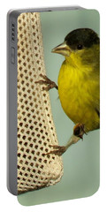 Male Goldfinch On Sock Feeder Portable Battery Charger