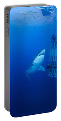 Male Great White With Cage, Guadalupe Portable Battery Charger by Todd Winner