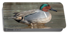 Male Green-winged Teal Dwf0171 Portable Battery Charger