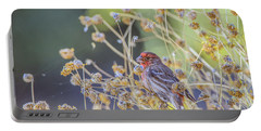 Male House Finch 7335 Portable Battery Charger by Tam Ryan