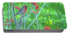 Male House Finch 8347 Portable Battery Charger by Tam Ryan
