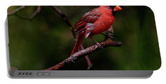 Male Northern Cardinal Portable Battery Charger