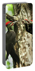 Male Pileated Woodpecker At Nest Portable Battery Charger