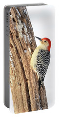 Portable Battery Charger featuring the photograph Male Red-bellied Woodpecker by Paul Miller
