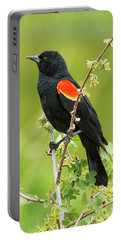 Male Red-winged Blackbird Portable Battery Charger