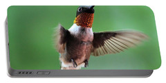 Male Ruby-throated Hummingbird Portable Battery Charger
