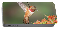 Male Rufus Hummingbird Portable Battery Charger