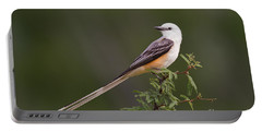 Male Scissor-tail Flycatcher Tyrannus Forficatus Wild Texas Portable Battery Charger