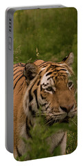 Male Tiger Portable Battery Charger