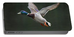 Mallard Drake In Flight Portable Battery Charger