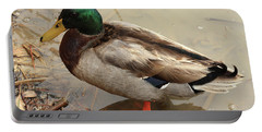 Portable Battery Charger featuring the photograph Mallard Duck by Kim Henderson