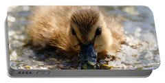 Portable Battery Charger featuring the photograph Mallard Duckling by Sue Harper