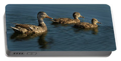 Portable Battery Charger featuring the photograph Mallard Family Outing by Jean Noren