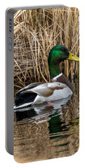 Mallard II Portable Battery Charger