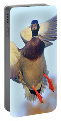 Mallard In Flight 2 Portable Battery Charger