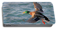 Mallard In Flight 3 Portable Battery Charger