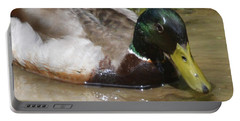 Portable Battery Charger featuring the photograph Mallard Madness by Kathy Kelly