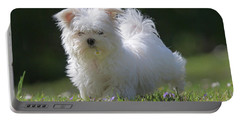 Maltese And Daisy Portable Battery Charger