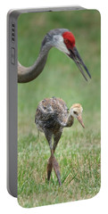 Mama And Juvenile Sandhill Crane Portable Battery Charger