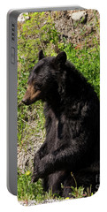 Mama Black Bear Portable Battery Charger